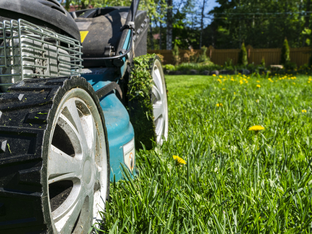 Get the Right Lawn Equipment for the Job